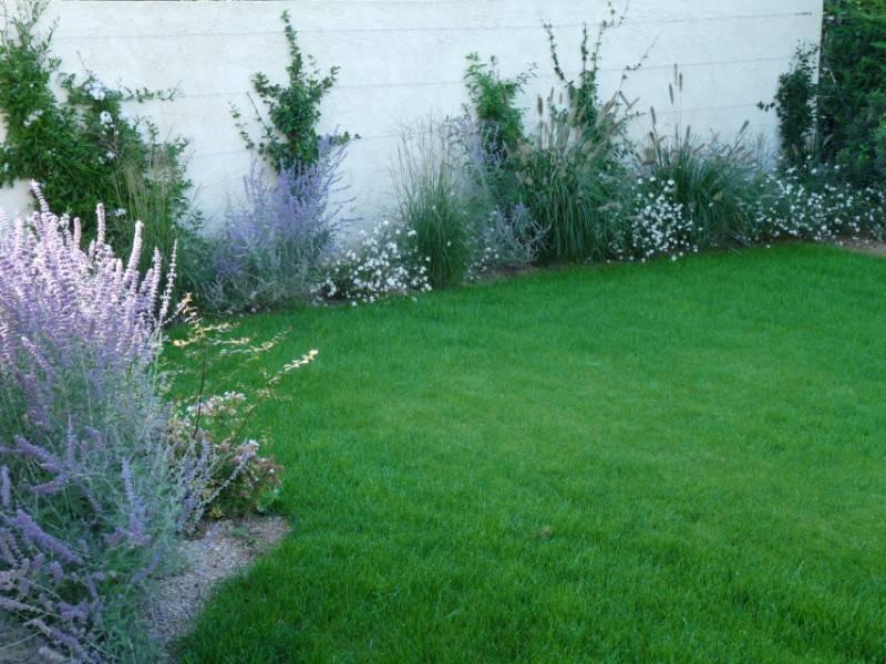 Suite de l\'aménagement du petit jardin dans le sud - 13- 84 ...